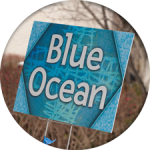 "outdoor sign reading ""blue ocean"""